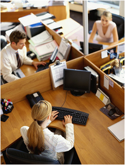 businesspeople sitting at computers in wooden cubicles
