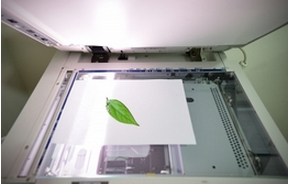paper with green leaf on scanner
